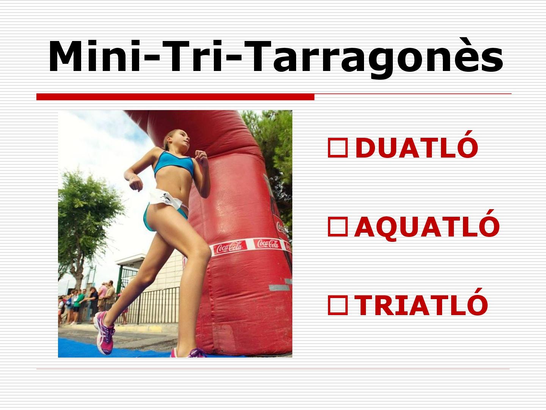 Mini---Tri-tarragones-001